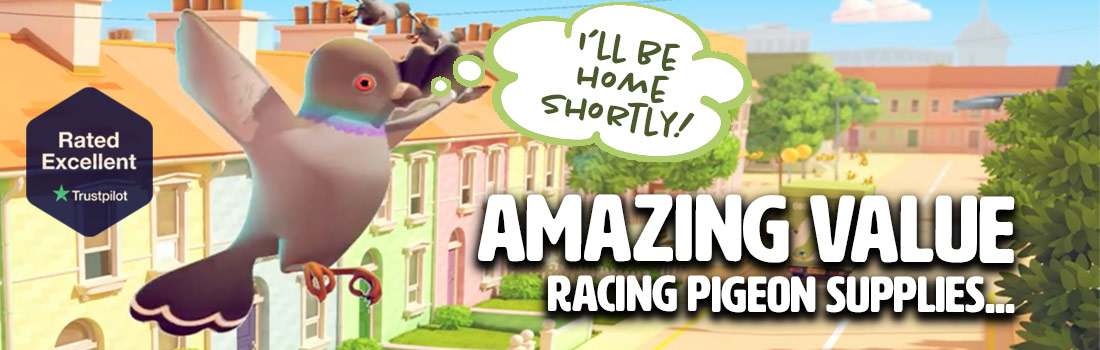 Racing pigeon category banner